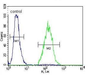 Flow Cytometry - Anti-ARL17B antibody (ab170512)