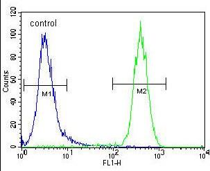 Flow Cytometry - Anti-CCDC63 antibody - C-terminal (ab170517)