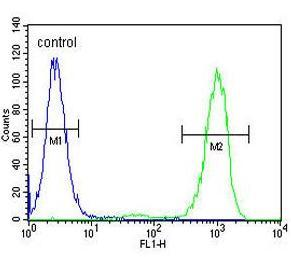 Flow Cytometry - Anti-GPM6B antibody - Aminoterminal end (ab170519)