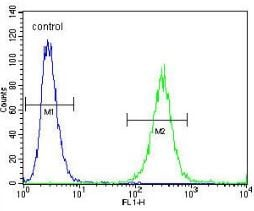 Flow Cytometry - Anti-GAB4 antibody - N-terminal (ab170528)