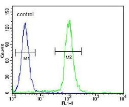 Flow Cytometry - Anti-GDF6 antibody - N-terminal (ab170532)