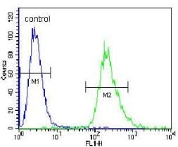 Flow Cytometry - Anti-PRR19  antibody (ab170539)