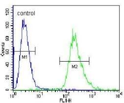 Flow Cytometry - Anti-PRR19  antibody (ab170539)