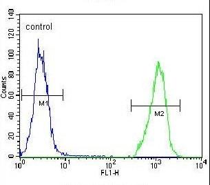 Flow Cytometry - Anti-Acid sphingomyelinase antibody - C-terminal (ab170579)