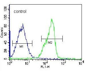Flow Cytometry - Anti-ZNF146 antibody - N-terminal (ab170634)