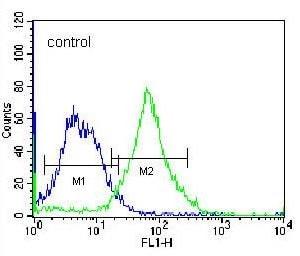 Flow Cytometry - Anti-FNDC7 antibody - C-terminal (ab170636)