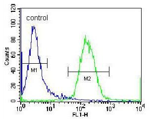 Flow Cytometry - Anti-RBPSUHL antibody - N-terminal (ab170720)