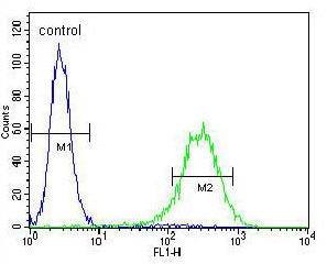 Flow Cytometry - Anti-AP-A antibody - C-terminal (ab170722)