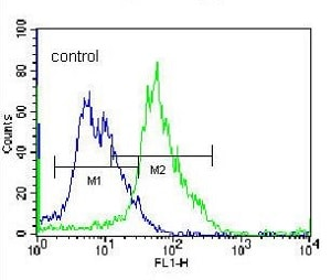 Flow Cytometry - Anti-Glutamyl hydrolase gamma antibody - C-terminal (ab170729)