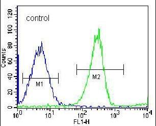 Flow Cytometry - Anti-RPS4Y1 antibody (ab170771)
