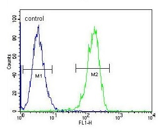 Flow Cytometry - Anti-CPSF7 antibody - C-terminal (ab170792)