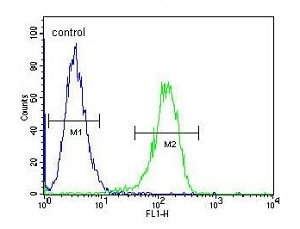 Flow Cytometry - Anti-TTBK2 antibody - N-terminal (ab170799)