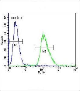 Flow Cytometry - Anti-beta Arrestin 1 antibody - C-terminal (ab170805)