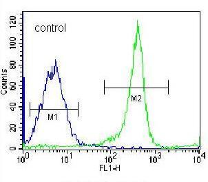 Flow Cytometry - Anti-EIF3C antibody - N-terminal (ab170841)