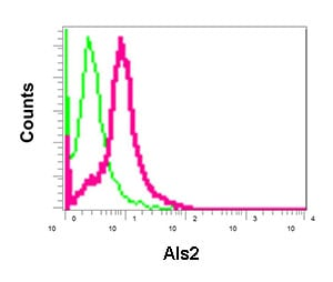 Flow Cytometry - Anti-Als2 antibody [EPR11185] (ab170896)