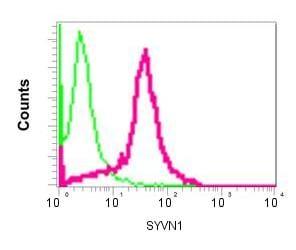 Flow Cytometry - Anti-SYVN1/HRD1 antibody [EP7459] (ab170901)