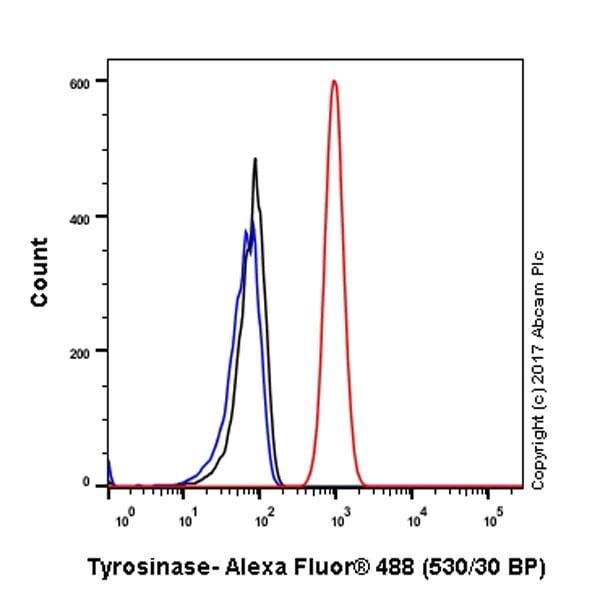 Flow Cytometry - Anti-Tyrosinase antibody [EPR10141] (ab170905)