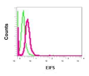 Flow Cytometry (Intracellular) - Anti-EIF5 antibody [EPR12140(B)] (ab170915)