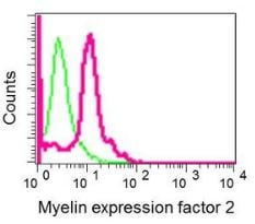 Flow Cytometry - Anti-Myelin expression factor 2 antibody [EPR10774(B)] (ab170946)