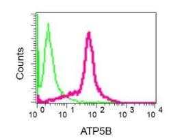 Flow Cytometry - Anti-ATPB antibody [EPR11991] (ab170948)