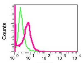 Flow Cytometry - Anti-NUB1 antibody [EPR10716] (ab171077)