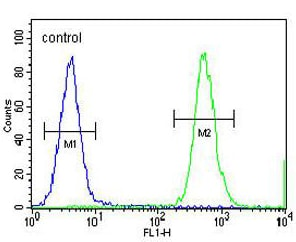Flow Cytometry - Anti-HNRNPCL1 antibody - C-terminal (ab171160)