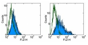 Flow Cytometry - Anti-B7H4 antibody [H74] - Low endotoxin, Azide free (ab171280)