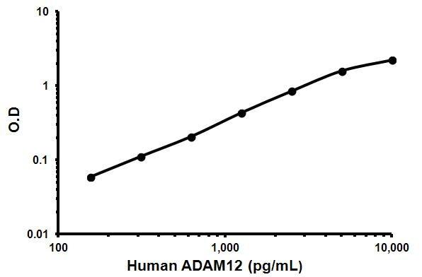 Typical satndard curve