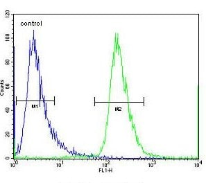 Flow Cytometry - Anti-CHI3L2 antibody - N-terminal (ab171409)