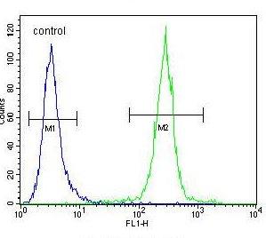 Flow Cytometry - Anti-COCH antibody (ab171410)