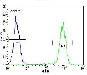Flow Cytometry - Anti-ELAVL2 antibody (ab171414)