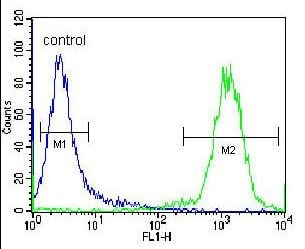 Flow Cytometry - Anti-CELF3 antibody - N-terminal (ab171415)