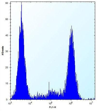 Flow Cytometry - Anti-zcrb1 antibody - C-terminal (ab171439)