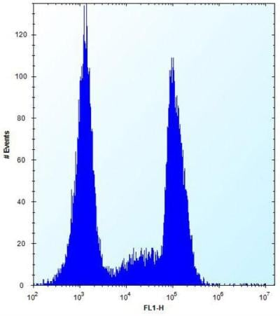 Flow Cytometry - Anti-OR10G9 antibody - C-terminal (ab171546)