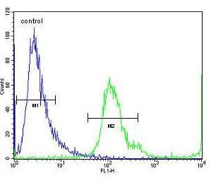 Flow Cytometry - Anti-MBNL2 antibody (ab171551)
