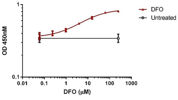 Dose-dependent induction of HIF1 alpha in HeLa cells by DFO (ab120727).