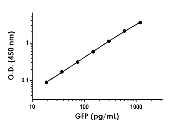 Example GFP standard curve