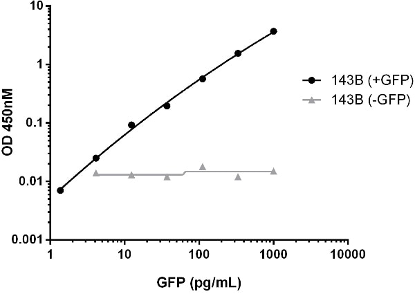 Titration of GFP spiked 143B cell lysate within the working range of the assay