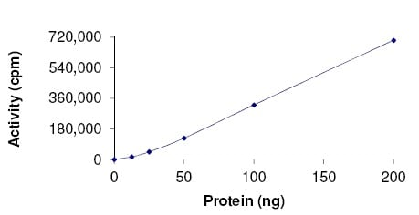 Other - Recombinant human Rsk 2 / MAPKAP Kinase 1b (mutated L608 F) protein (ab172182)