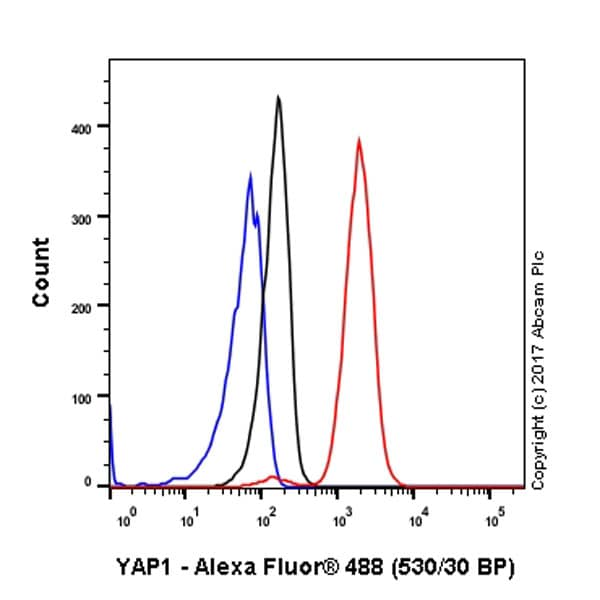 Flow Cytometry - Anti-YAP1 antibody [EP1674Y] - BSA and Azide free (ab172373)