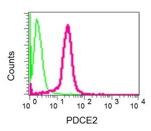 Flow Cytometry - Anti-Pyruvate Dehydrogenase E2 antibody [EPR12455(B)] (ab172617)