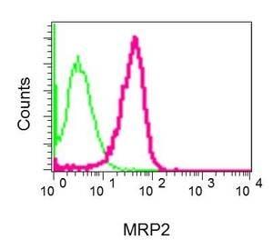 Flow Cytometry - Anti-MRP2 antibody [EPR10998] (ab172630)