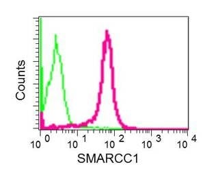 Flow Cytometry - Anti-SMARCC1/BAF155 antibody [EPR12395] - ChIP Grade (ab172638)