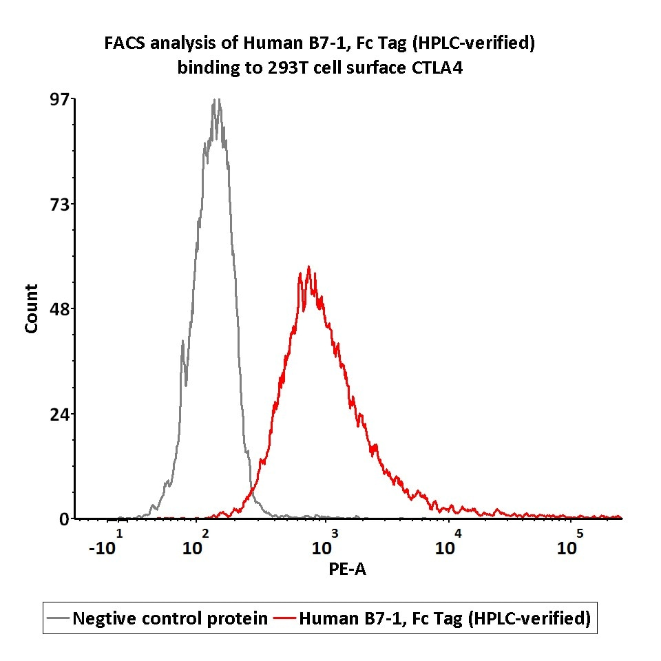 Functional Studies - Recombinant human CD80 protein (ab173993)
