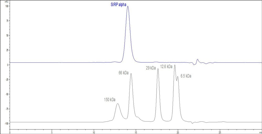 HPLC - Recombinant Human SIRP alpha protein (ab174006)