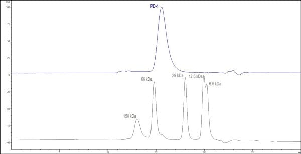 HPLC - Recombinant human PD1 protein (ab174035)