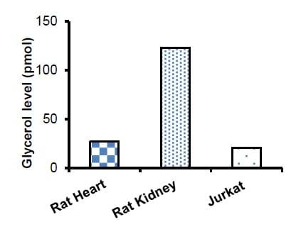 Measurement of Glycerol Levels