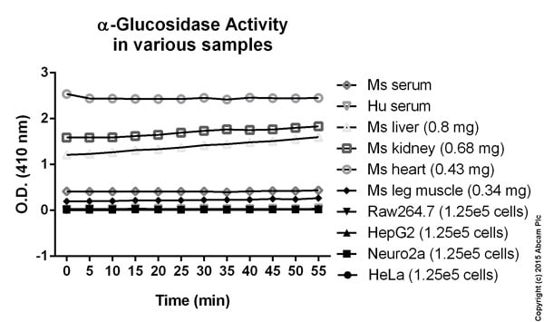 Alpha-Glucosidase Activity Assay Kit (ab174093)