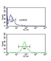 Flow Cytometry - Anti-LUZP1 antibody - C-terminal (ab174358)