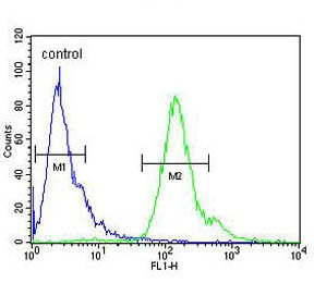 Flow Cytometry - Anti-MMGT1 antibody - C-terminal (ab174366)